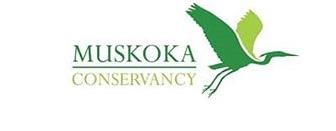 Private Yoga in Muskoka 2